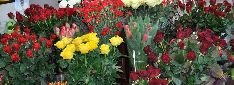 slide-swieze-kwiaty